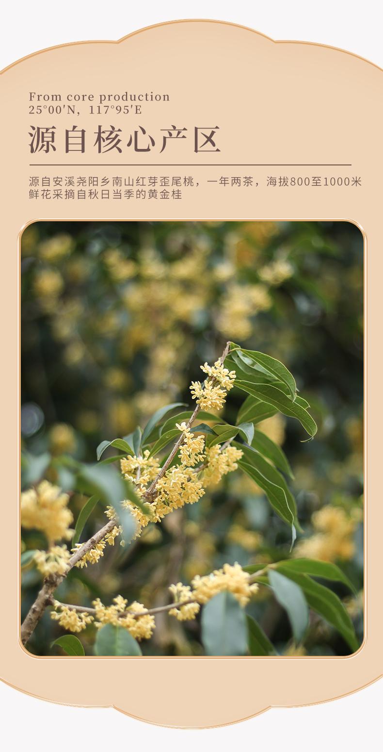南山金桂乌龙(图3)